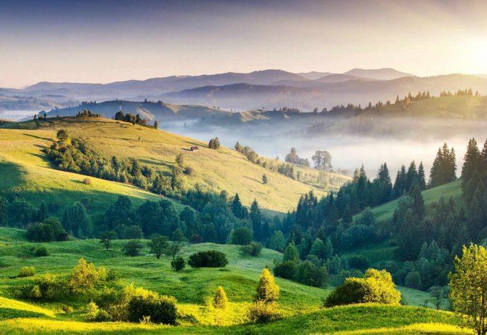 Nature-Zlatibor-Mountain-zlatar